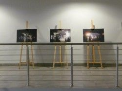 Wystawa - Brutal z Katowic